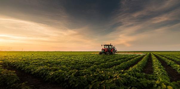Mezőgazdasági tevékenységű adóalany bizonylatolása